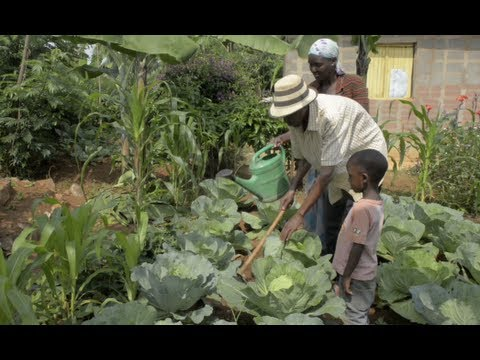 Rwanda: Food Security and livelihood
