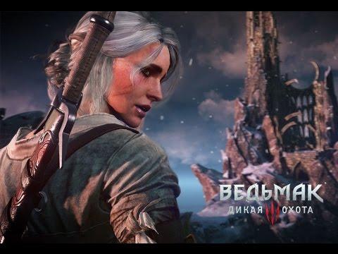 Встреча Геральта и Цири (Witcher 3)
