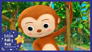 5 Little Monkeys Swinging In The Tree + More! | Little Baby Boogie | LBB | Baby Songs
