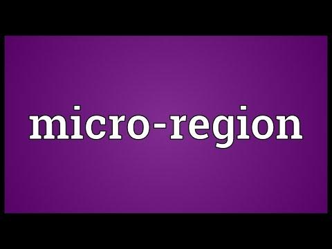 Header of Micro-Region