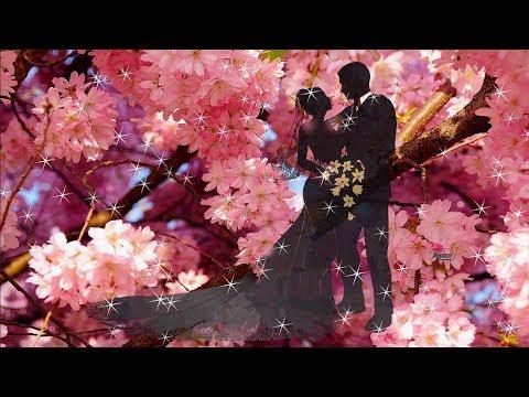 ♫ Ernesto Cortazar(Эрнесто Кортазар)~Весна~Любовь~Счастье