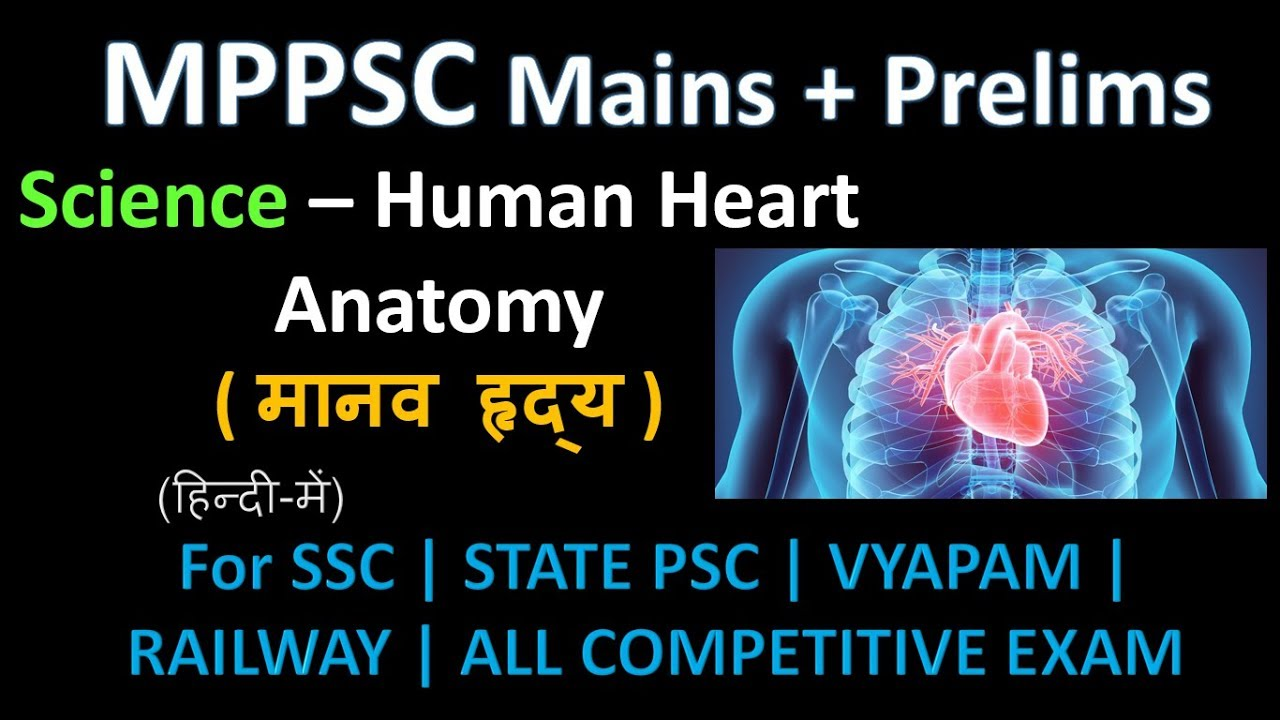 Anatomy of heart in hindi