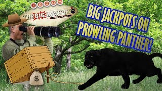 💣 Big Jackpots on Prowling Panther 🐾