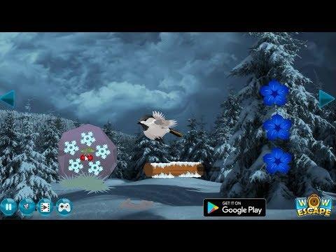 Wow Dark Winter Forest Escape walkthrough Wowescape.