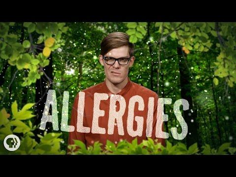 %$?# Allergies!