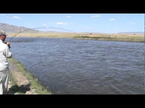 Wyoming fly fishing grey reef anglers north platte river for Miracle mile fishing report