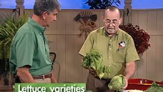 Central Florida Gardening - Cool Season Vegetables