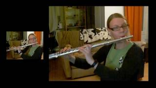 Megalovania from Undertale, flute cover