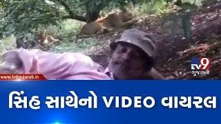 Man sits in front of lion, video goes viral | Gir-Somnath -Tv9GujaratiNews
