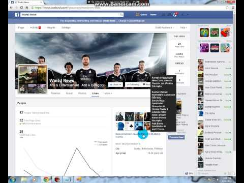 how to hack facebook page likes permenat2014