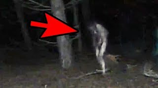 5 Mysterious Creatures Caught On Camera : Top 5 STRANGE Creatures