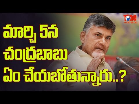 What Chandrababu Is Going To Do On March 5th ? | AP Political News | NewsOne