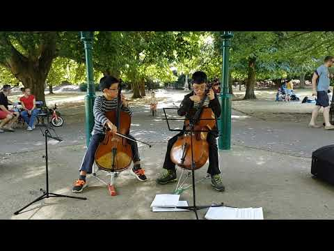 Avicii - Wake Me Up - Cello Cover by 2Chams