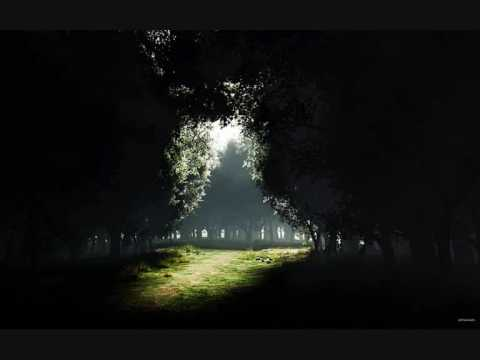 Dan Gibson - Hymn to the old growth