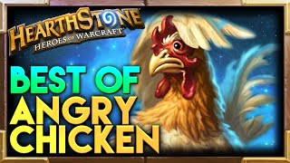 Angry Chicken Hearthstone Moments | Hearthstone Funny Lucky Best Plays Moments
