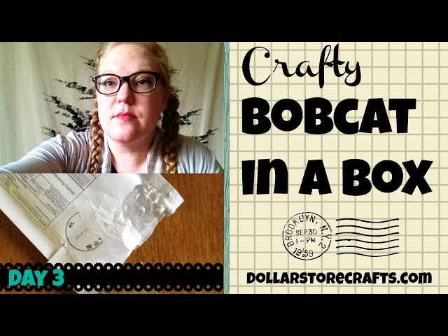 Dollar Store Crafts: Crafty Bobcat in a Box, Unboxing Day 3 (1/12/2015)