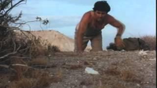 Wild Cactus Trailer 1992