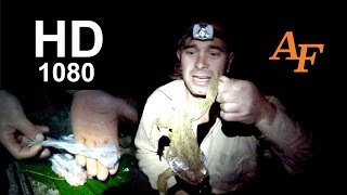 Eating deadly cane toads how to survive survival video Andysfishing eat EP.103