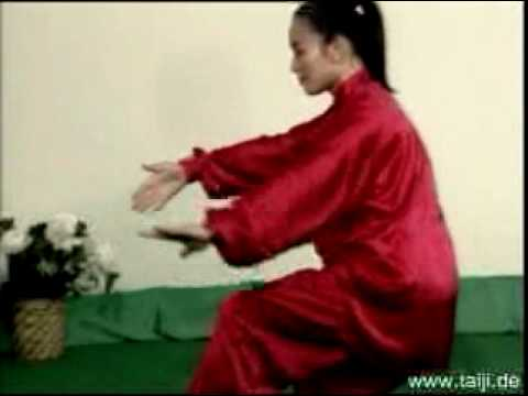 Tai-chi-chuan - Forma Mista Em 48 Movimentos video