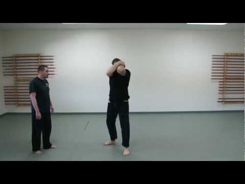 How to Fight: Basic Crash Technique for Punch Defense: Street Grappling Techniques Image 1