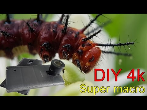 DIY 4k video Smartphone Super macro Reviews. Lens Eyepiece stereo microscope.