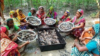 450 Climbing Perch Fish Cutting & Cooking By 15 Women For Whole Village Peoples