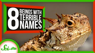 8 More Terrible Names for Living Things