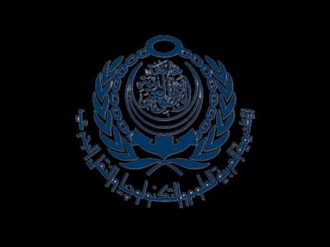 Arab Academy Radio Campaign