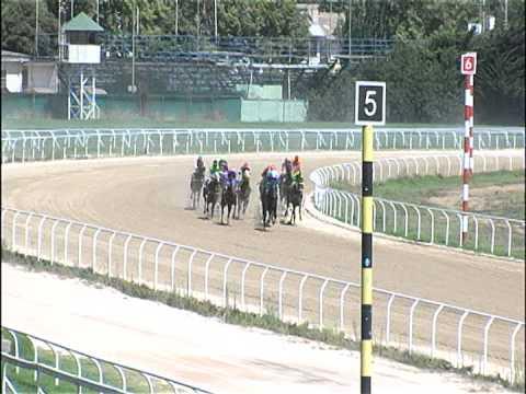 Vidéo de la course PMU PREMIO ROLANDO CARVAJAL HANDICAP