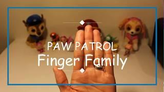 PAW PATROL..Finger Family Nursery Rhyme Song for kids!
