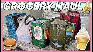 HUGE GROCERY HAUL + PREGNANCY UPDATE! | Madison Miller