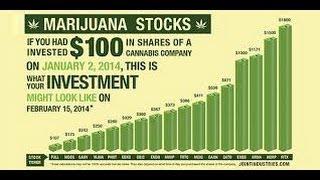 Marijuana Penny Stocks 2014 - Warning From Tim Sykes