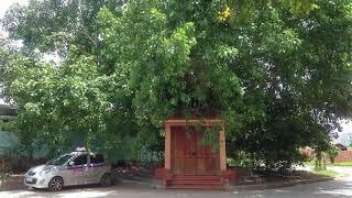 Chuyện lạ đời - Chuyện ly kỳ quanh ngôi miếu thiêng làng Nhân Mỹ