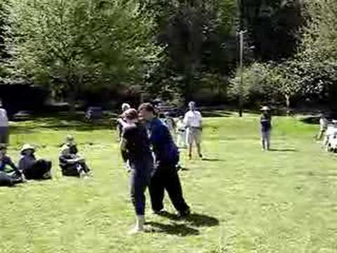 Tai Chi Sanshou Demonstration Image 1