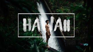 KOLD - Hawaii v2.0 - Be Wild