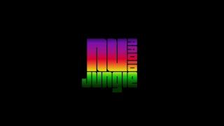 (LIVE) Ragga Jungle, Reggae Drum and Bass, Dubwise DnB Music. 24/7 Shows & Replays - NuJungle Radio