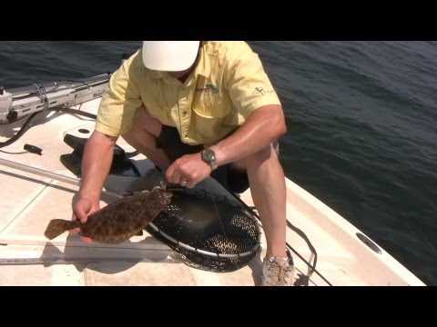 How to fish spoon lures at thedoglogs for Fluke fishing bait