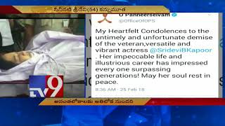 Sridevi's life an inspiration || Tamil Nadu Dy CM OPS