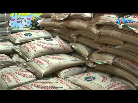 Seed selection for Paddy farming - Paadi Pantalu