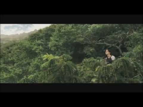 The Hanging Tree - Mockingjay (Lyrics in Desc.)