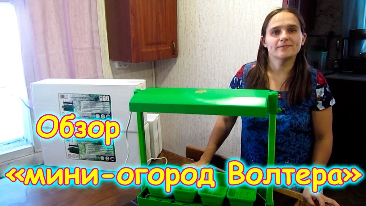 Обзор мини-огорода от Волтеры. (02.19г.) Семья Бровченко.