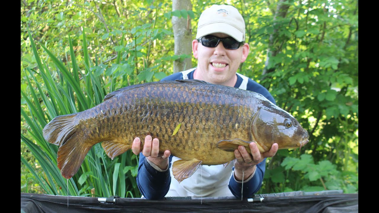 how to fish for carp in october