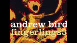 Watch Andrew Bird Tin Foil video