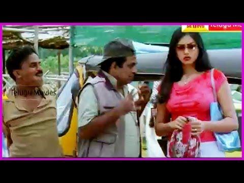 Brahmanandam Comedy Scenes - Gemini Telugu Movie - Venkatesh,namitha video