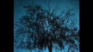Watch Martina McBride Through Your Eyes video