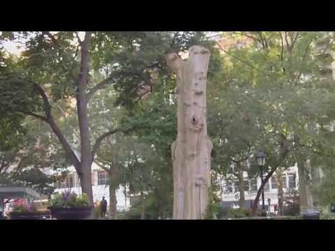 Madison Square in New York City - A Fun Place To Visit In Manhattan