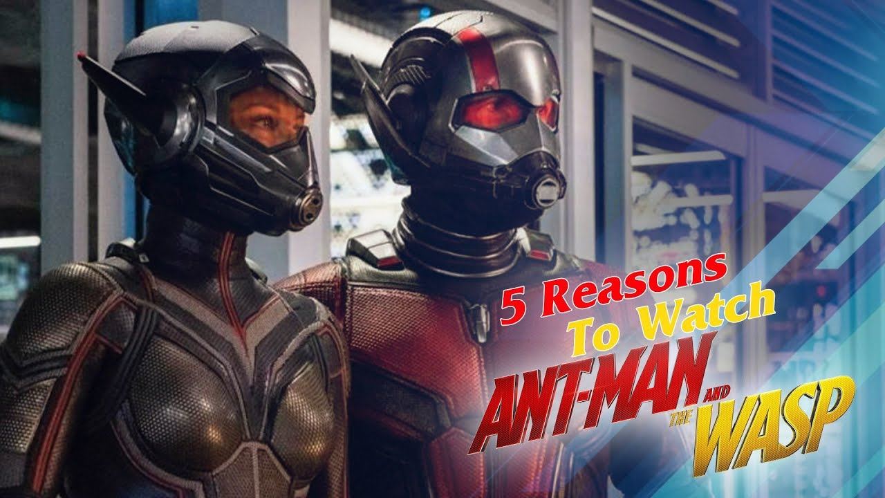 Ant-Man and The Wasp Movie | 5 Reasons To Watch Ant-Man And The Wasp