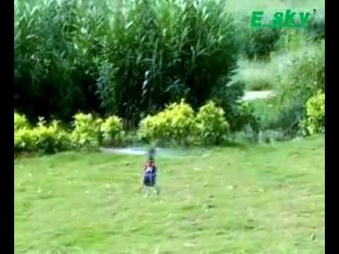 E-Sky belt CP-V2 Radio controlled electric helicopter (official video)