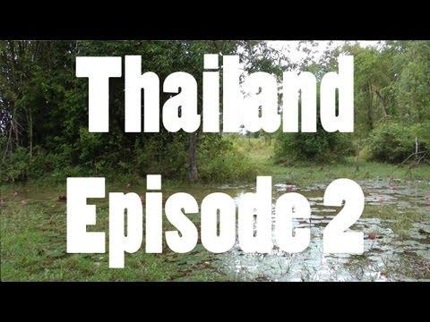 DM Exotics Reptile Adventures in Thailand - Episode 2