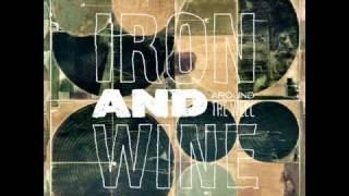 Watch Iron  Wine Sinning Hands video